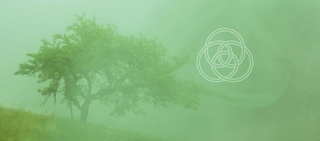 celtic reiki sacred trees calendar